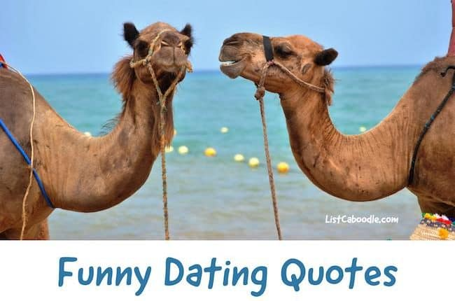 love and dating quotes