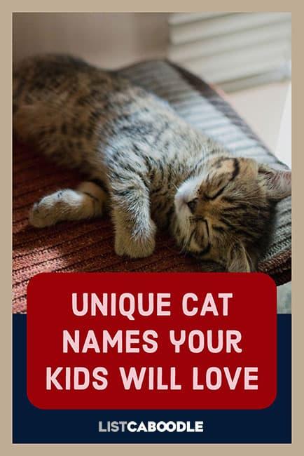 Unique Cat Names A to Z