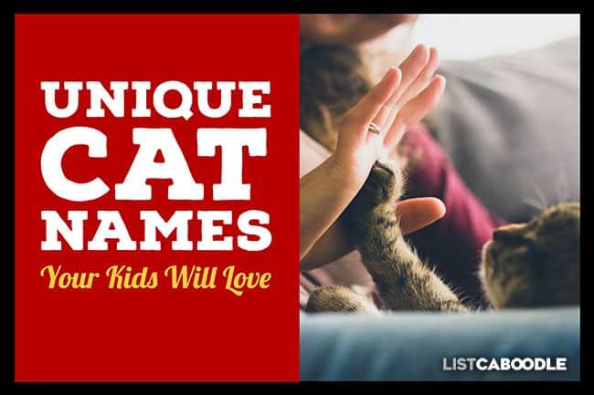 Unique Cat Names Guide Kids Will Love | ListCaboodle com