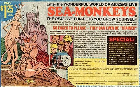 Comic Mail Order Ads: Sea Monkeys image