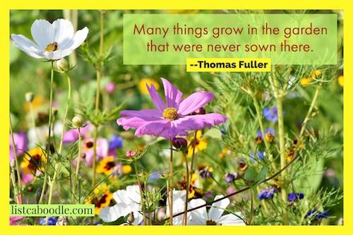 Thomas Fuller quotation image