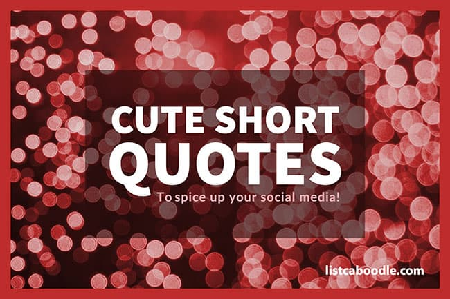 Cute Short Quotes Sayings To Spice Up Social Media Listcaboodlecom