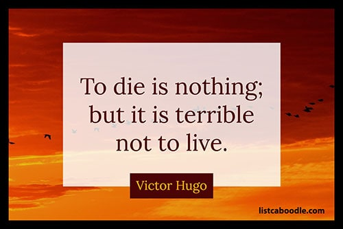 Short quotes about life: Victor Hugo quote