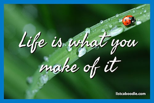 Tattoo Quotes: Life is what you make of it meme