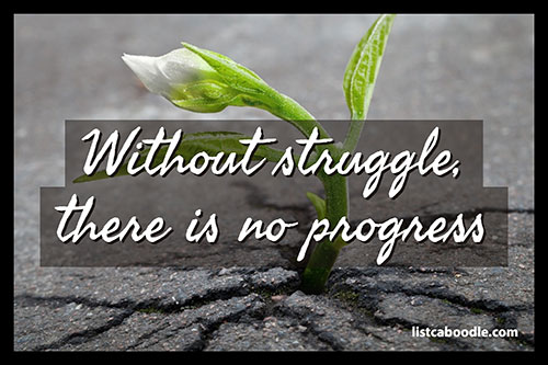 Without struggle quote