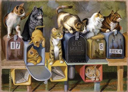 Cat mailbox puzzle image