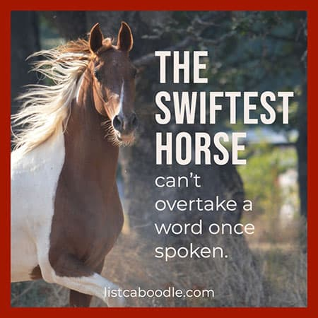 Spoken word proverb image