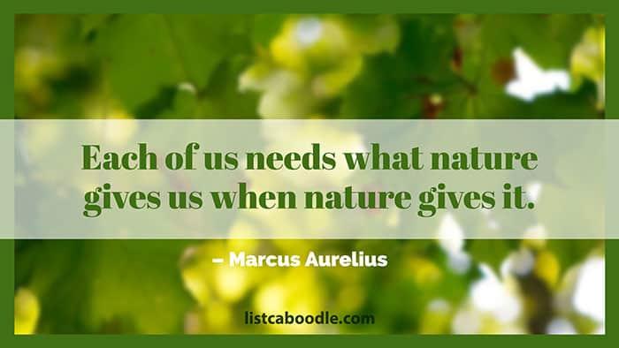 Nature quote image