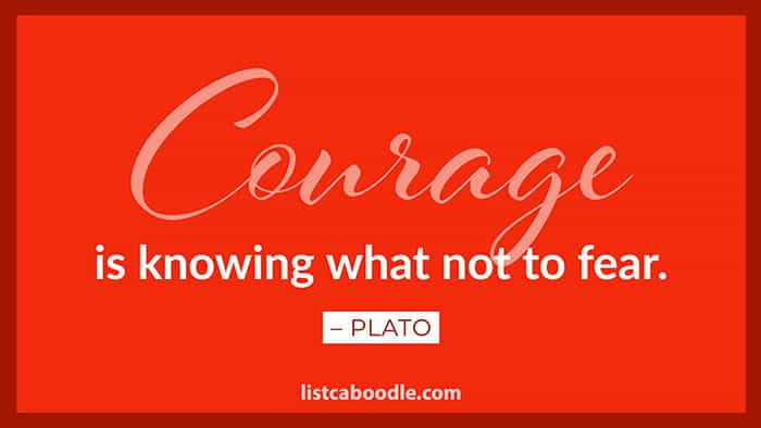 Courage quote image