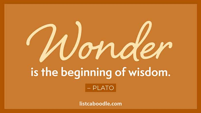 Plato wonder quote image