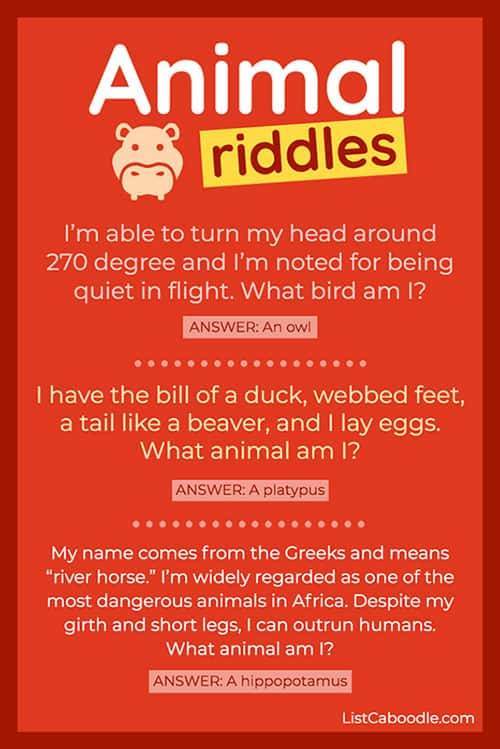 27 Animal Riddles For Kids That Are Great For Car Rides And Classrooms