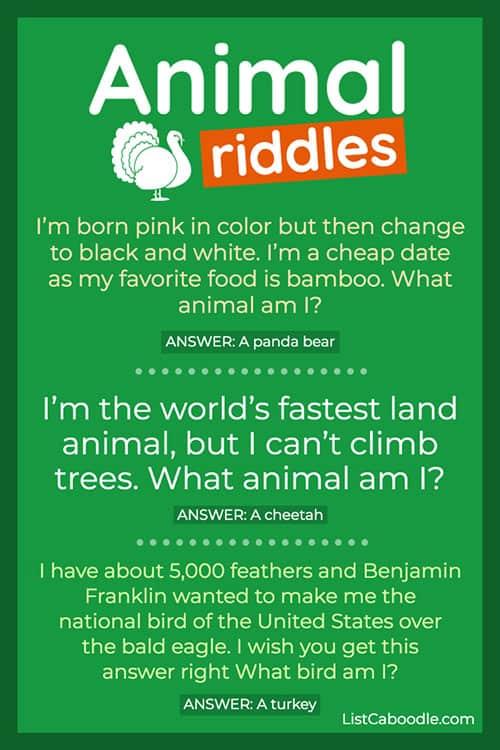 Animal puzzlers turkey image