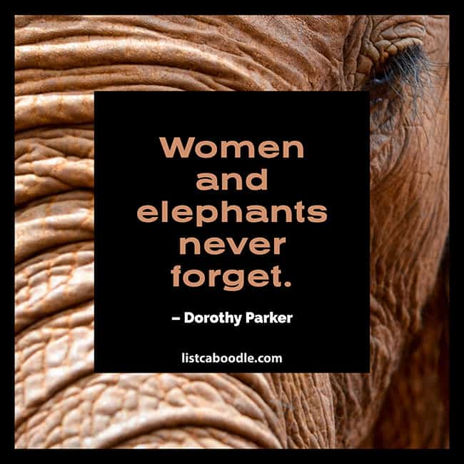 Women and elephants never forget quote