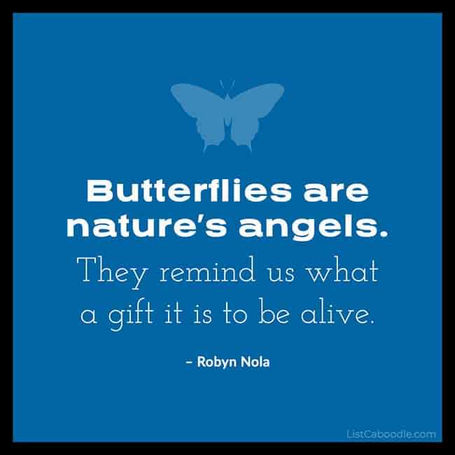 Robyn Nola butterfly quote image