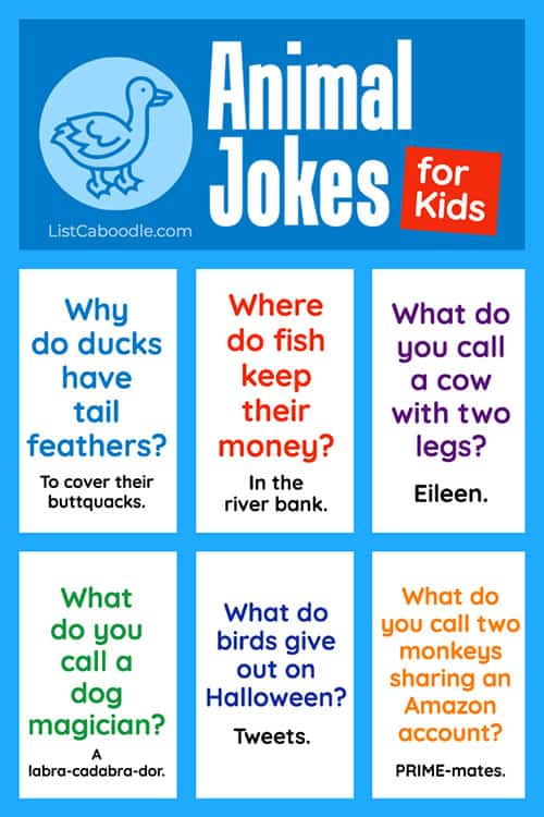 Animal Jokes image