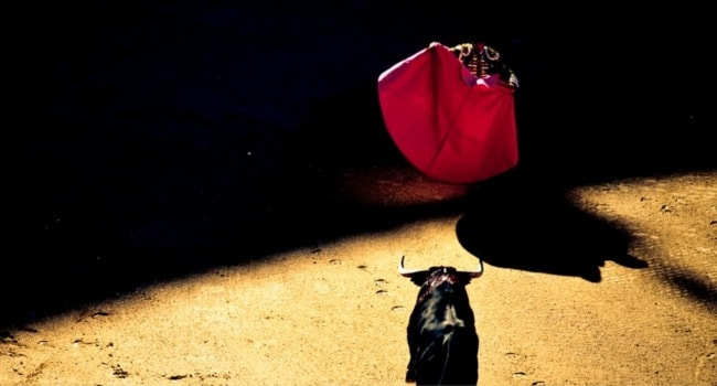 Bullfight image