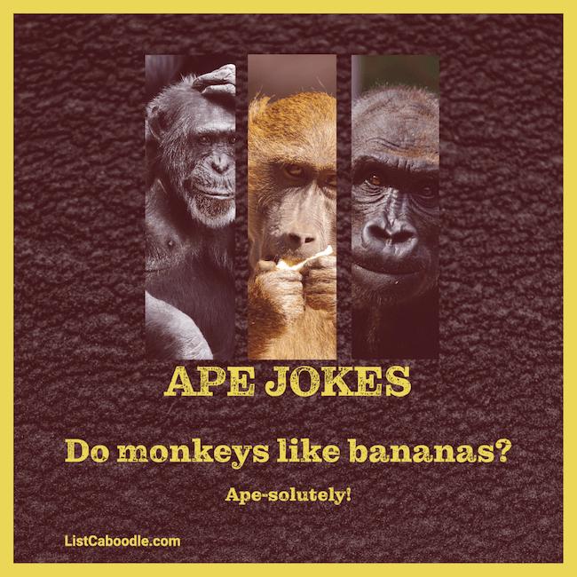 Ape jokes