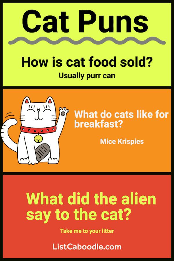Best Cat Puns