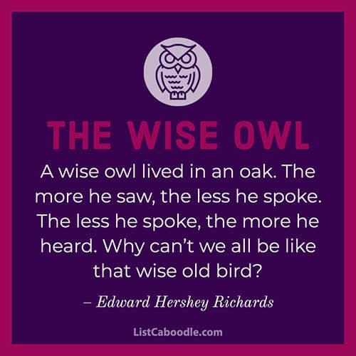 Owl wisdom quotation