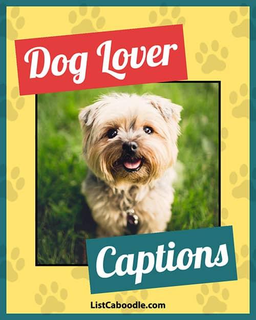 Dog lover captions image