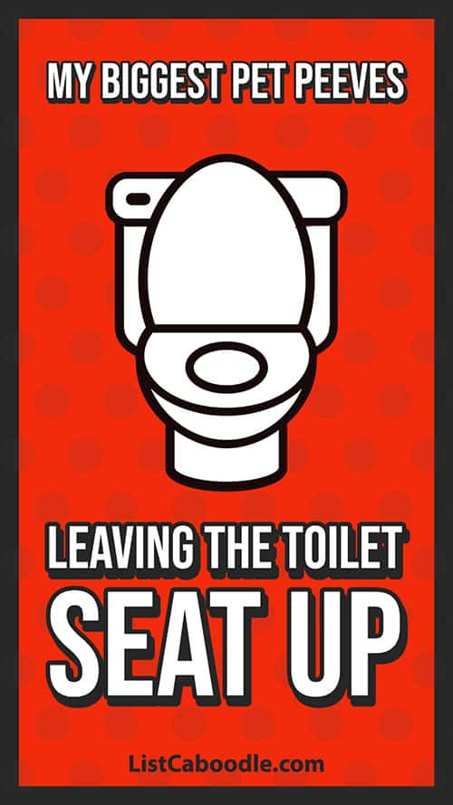 Pet peeves: leaving the toilet seat up
