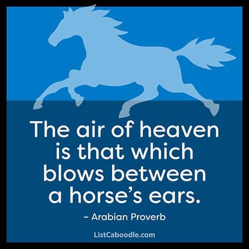 Arabian proverb quote