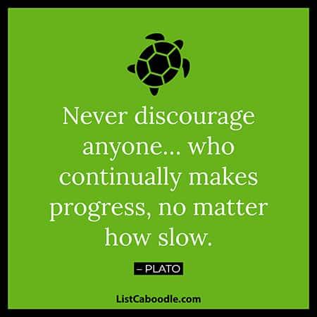 Plato turtle quote