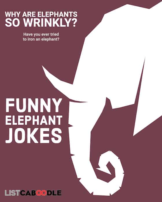 funny elephant jokes