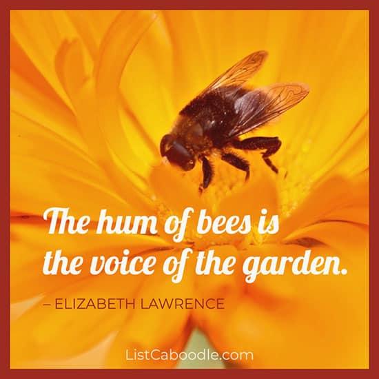 Bee garden quote