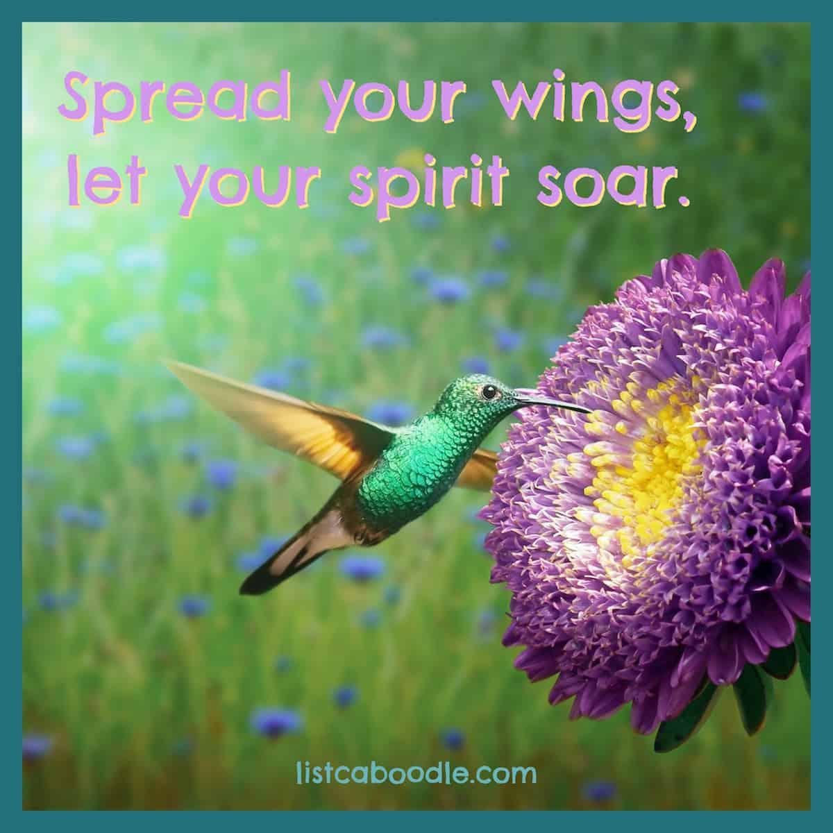 Good hummingbird quotes