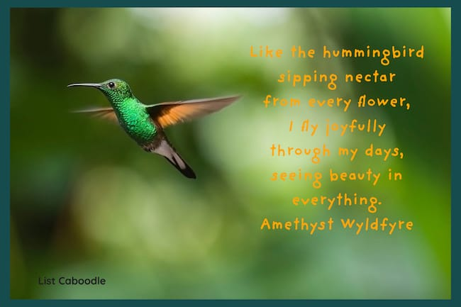 Seeing beauty in everything quote
