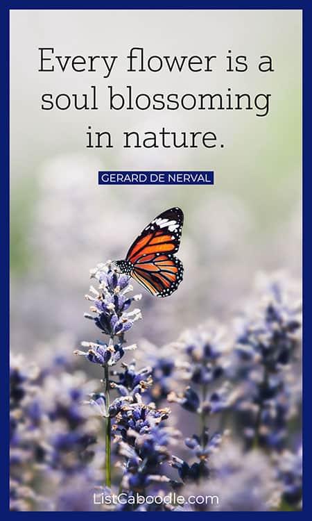 Flower gardening quote image